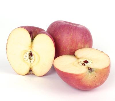 한터농원 사과(부사, 1kg)