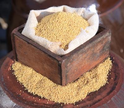 무농약 기장쌀(500g)