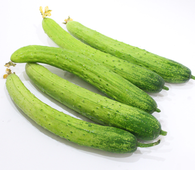 오이지용 유기농오이(20개,4kg이상)