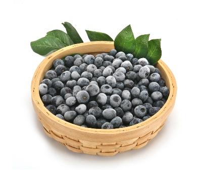 홍가네  친환경(무농약)  블루베리 (특) 1kg
